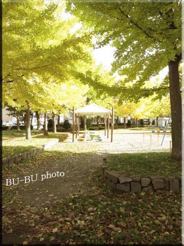 公園。.jpg