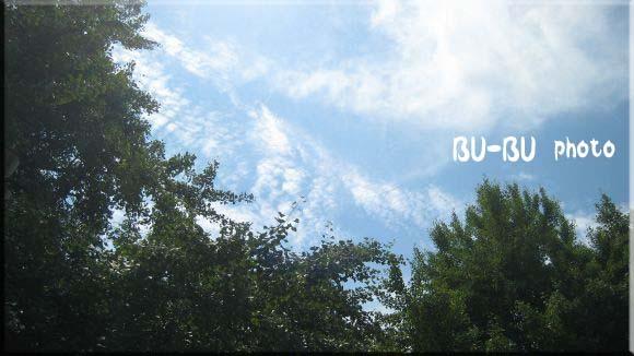 爽やかな青空の下で♪.jpg