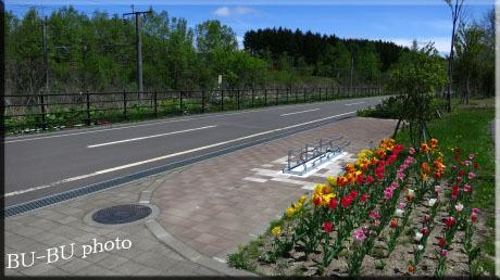 自転車の道。.jpg